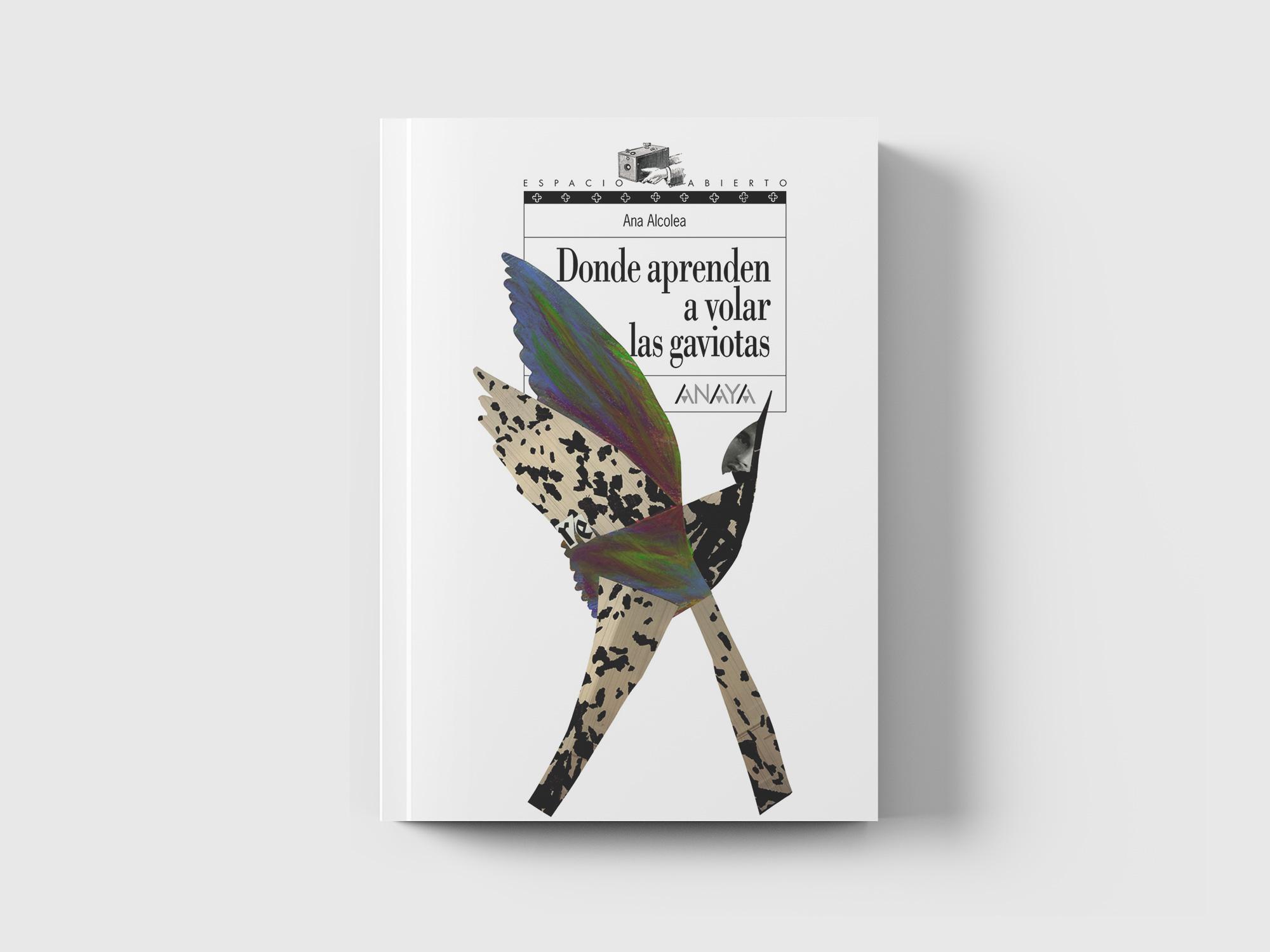 Donde Aprenden A Volar Las Gaviotas Libros Que Importan